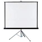 Projector Screen Rentals